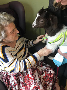 Farm animals bring smiles to elderly residents' faces