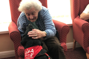 Ralph the dog in care home